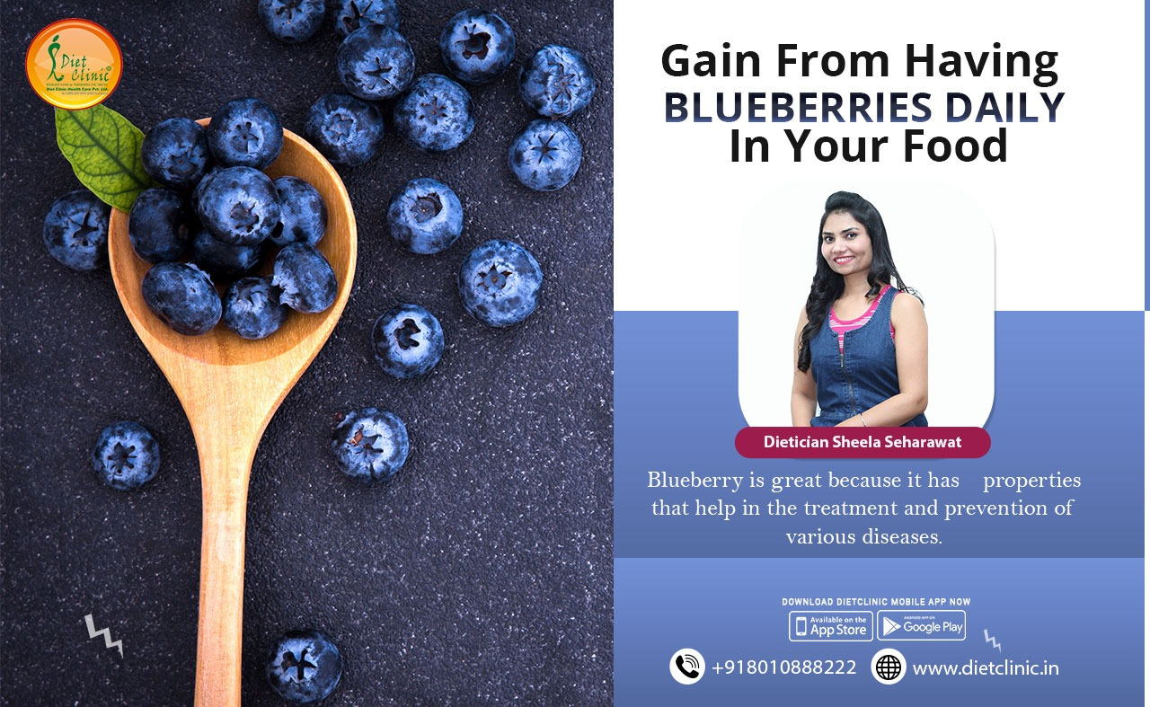 Gain from having blueberries daily in your food