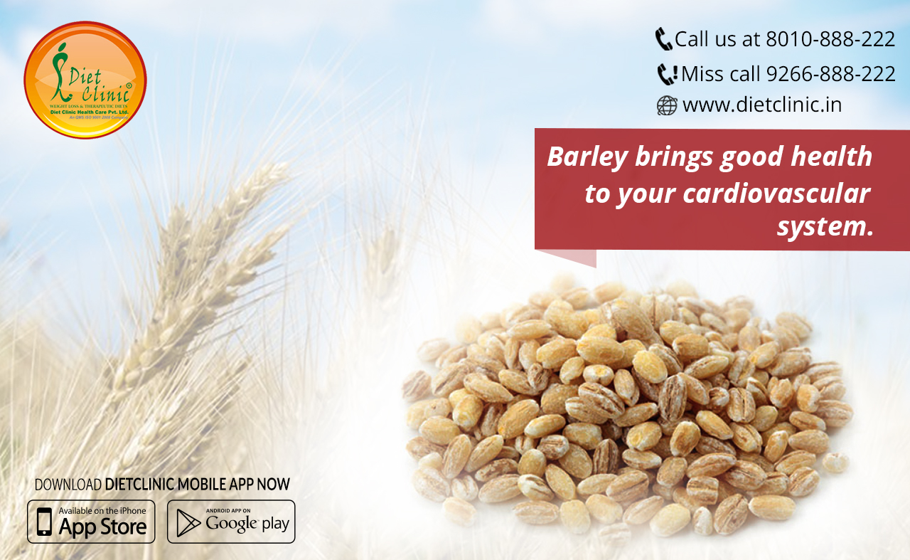 Barley brings good health to your cardiovascular system